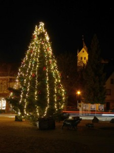 k800_weihnachtsbaumrathausplatzabend_28-11-2016_045fotocbuchen