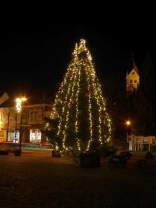 k800_weihnachtsbaumrathausplatzabend_28-11-2016_049fotocbuchen